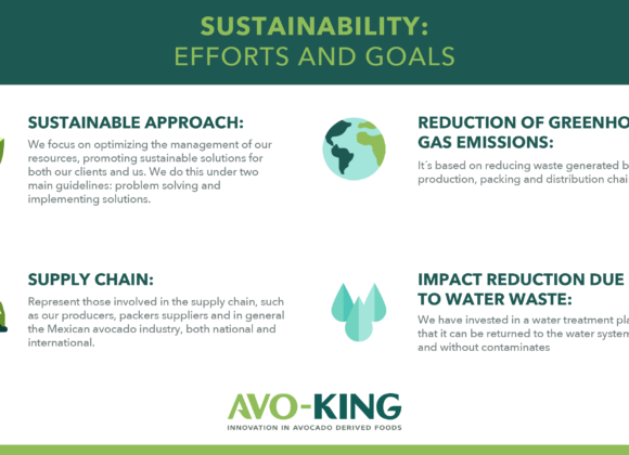 Sustainability: Efforts and goals